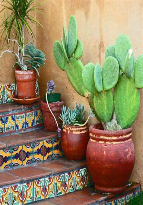 cacti in terracotta | * Awesome Interiors & Exteriors