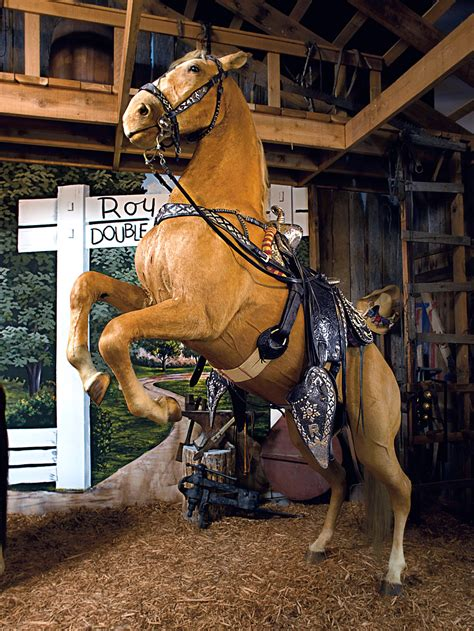 For Sale: Roy Rogers' Trusty Horse, Trigger : NPR