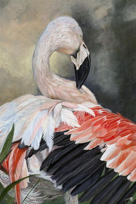 Fancy Feathers   Artists for Conservation