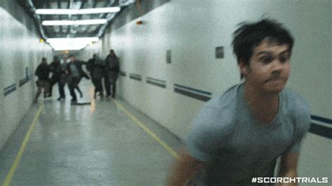 Scorch Trials GIFs - Find & Share on GIPHY