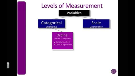 SPSS: Understand Ordinal, Nominal & Scale (aka Level of
