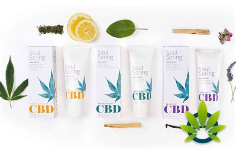 SoulSpring CBD Botanical Therapy: Body Lotions, Creams